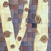 Birches_Thumb_1