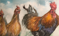 Chickens_Thumb_2