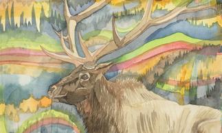 Elk_Thumb_3